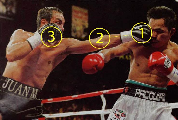 Hướng dẫn cú đấm thẳng jab boxing