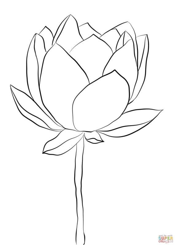 Tranh tô màu hoa sen cho bé